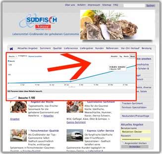 Erfolg durch Google Suchmaschineoptimierung